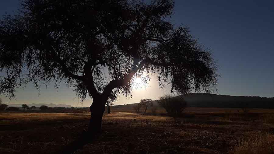 Fotografía tomada por estudiante de la PrepaTec Querétaro
