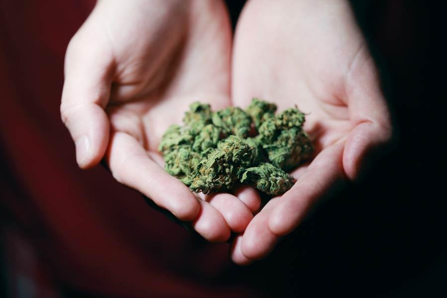 Despenalización del consumo de la mariguana