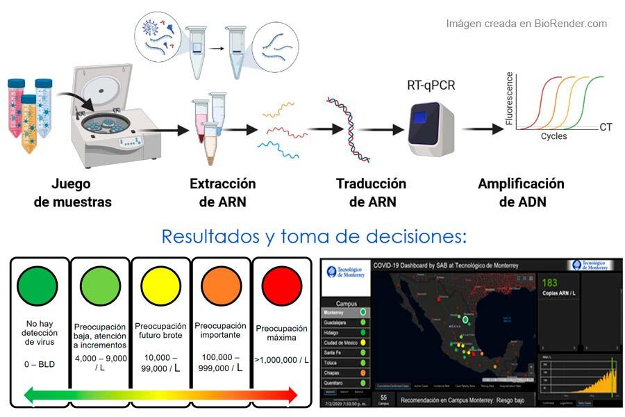 El proyecto MARTEC también cuenta con un sistema de semaforización con 5 niveles de alerta según el nivel del virus en el agua.