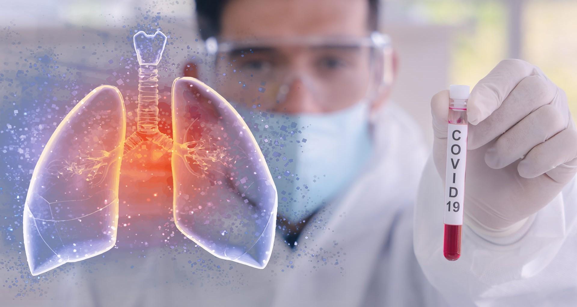 Datos básicos que debes saber sobre el coronavirus y COVID-19 | Tecnológico  de Monterrey