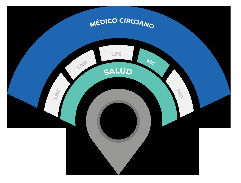 MC etapas del modelo
